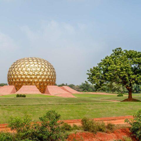 Pfeffer aus Pondicherry: ein aufregendes Geschmackserlebnis